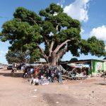 werkbezoek-tanzania-1-2013-163